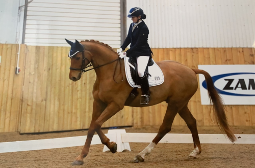 Dressage Academy selection for Francesca