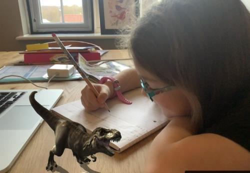 Year 2 Research Dinosaurs