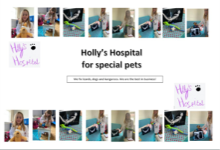 Holly's Hospital for Special Pets