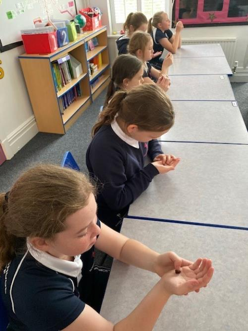Year 6 Mindfulness